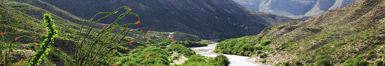 Desert Conservation Cooperative