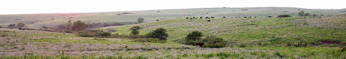 Great Plains Landscape Conservation Cooperative