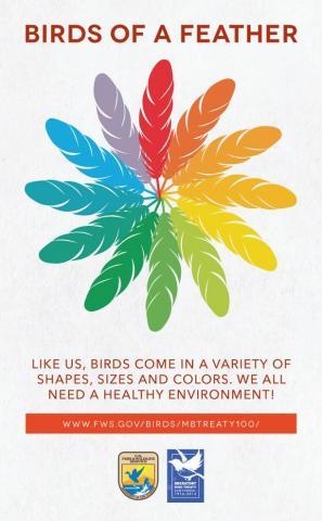 Migratory bird centennial artwork