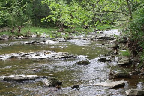 West Virginia stream