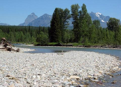 The North Fork of the Flathead River, a gravel-bed river floodplain