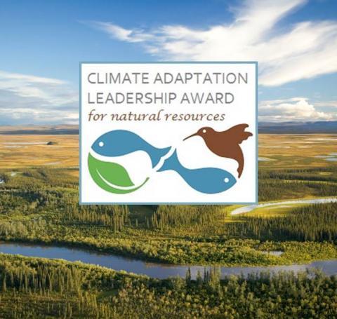 Climate leadership award graphic