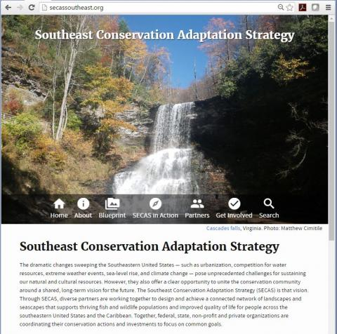The home page of secassoutheast.org