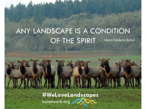 We Love Landscapes