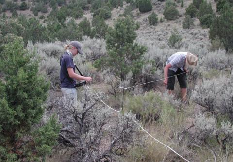 Soil climate research