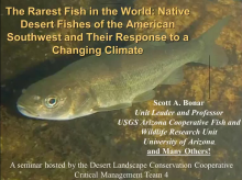 The Rarest Fish in the World-Desert Fishes and Their Response to a