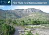 Gila River Flow Needs Assessment webinar screen shot