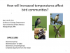 How Will Increased Temperatures Affect Bird Communities? webinar